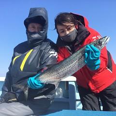 1月 31日(日) 1日便・イワシの泳がせ釣りの写真その1