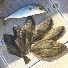 1月 31日(日) 1日便・イワシの泳がせ釣りの写真その4