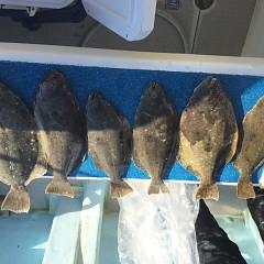 1月 31日(日) 1日便・イワシの泳がせ釣りの写真その7