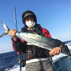 2月 11日 (水) 1日便・イワシの泳がせ釣りの写真その4