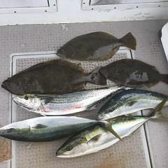 2月 11日(金) 1日便・イワシの泳がせ釣りの写真その6