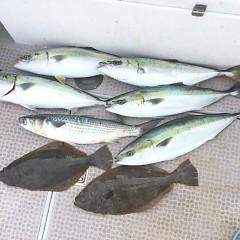 2月 11日(金) 1日便・イワシの泳がせ釣りの写真その10