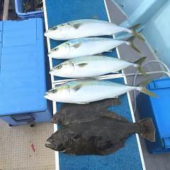 2月 11日(金) 1日便・イワシの泳がせ釣りの写真その11
