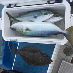 2月 13日(土)午前便・イワシの泳がせ釣りの写真その12