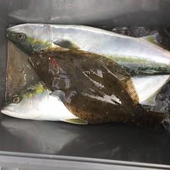 2月 14日(日)1日便・イワシの泳がせ釣りの写真その6
