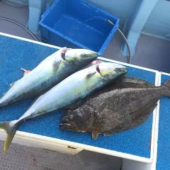 2月 14日(日)1日便・イワシの泳がせ釣りの写真その7