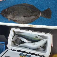 2月 14日(日)1日便・イワシの泳がせ釣りの写真その8