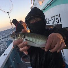 2月 19日(金) 午後便・アジ釣りの写真その3