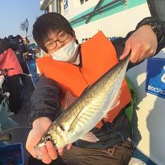 2月 20日(土)午前・泳がせ釣り 午後・アジ釣りの写真その4