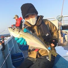 2月 20日(土)午前・泳がせ釣り 午後・アジ釣りの写真その5