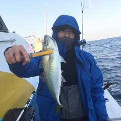 2月 20日(土)午前・泳がせ釣り 午後・アジ釣りの写真その7