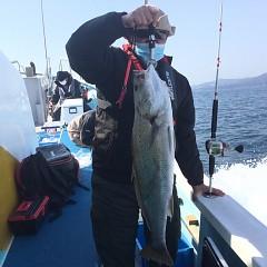 2月 21日(日)午前便・イワシの泳がせ釣りの写真その3