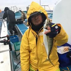 2月 26日(金)午前・泳がせ釣り 午後・アジ釣りの写真その4