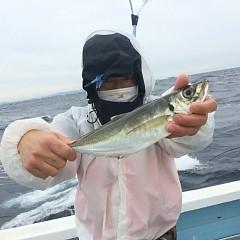 2月 26日(金)午前・泳がせ釣り 午後・アジ釣りの写真その5