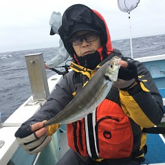 2月 26日(金)午前・泳がせ釣り 午後・アジ釣りの写真その7