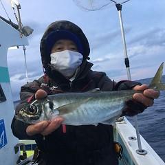 2月 28日(日)午前、午後・アジ釣りの写真その3