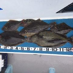 3月 12日(金) 午前便・泳がせ釣りの写真その2