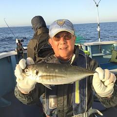 3月 18日(木)午前・ヒラメ釣り 午後・アジ釣りの写真その8