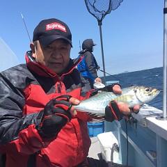 4月 10日(土) 午前、午後・アジ釣りの写真その3
