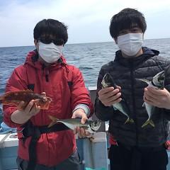 4月 25日(日)午前便・アジ釣りの写真その2
