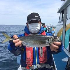 4月 27日(火) 午前、アジ釣り 午後・ウタセ真鯛の写真その1