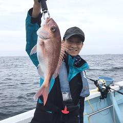 5月 15日(土) 午後便・ウタセ真鯛の写真その1