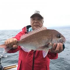 5月 15日(土) 午後便・ウタセ真鯛の写真その2