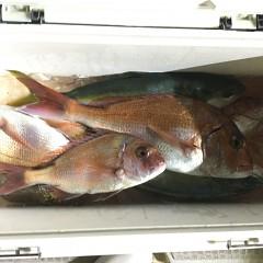 5月 16日(日)午前、アジ釣り 午後・ウタセ真鯛の写真その8