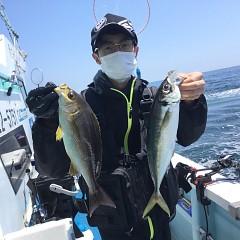 5月 31日(月)午前・午後便・アジ、イサキ釣りの写真その3