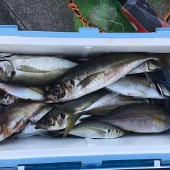 5月 31日(月)午前・午後便・アジ、イサキ釣りの写真その4