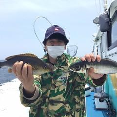 6月 8日(火) 午前、午後・アジ、イサキ釣りの写真その2