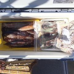 7月 24日(土)1日便・スルメイカ釣りの写真その2