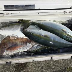 7月29日(木)タテ釣りの写真その1