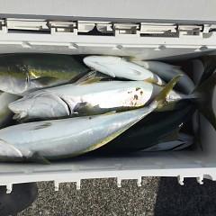 7月29日(木)タテ釣りの写真その4