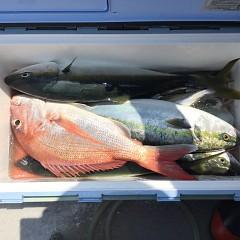 7月 30日(金)午前便・タテ釣りの写真その9