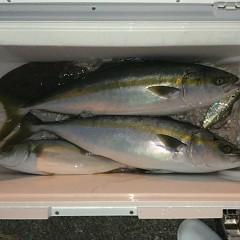 8月27日(金)午前・午後・タテ釣りの写真その10
