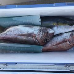 8月 28日(土)午前、午後・タテ釣りの写真その6