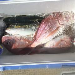 8月 28日(土)午前、午後・タテ釣りの写真その8