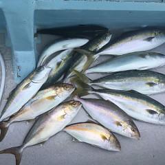 9月 5日(日)午前便・タテ釣りの写真その4