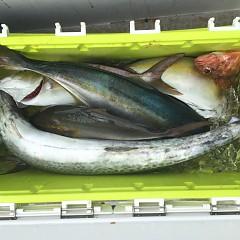 9月 5日(日)午前便・タテ釣りの写真その8