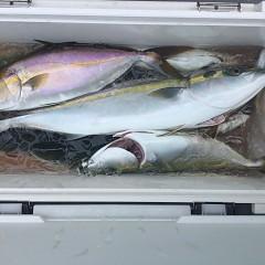 9月 5日(日)午前便・タテ釣りの写真その9
