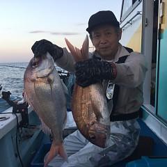 9月 9日(木)午後便・ウタセ真鯛の写真その5