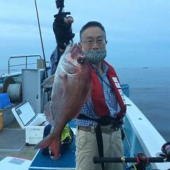 9月 13日(月) 午後便・ウタセ真鯛の写真その3