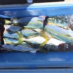 9月 24日(金)午前便・タテ釣りの写真その1