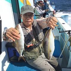 9月 24日(金) 午後便・ウタセ真鯛の写真その3