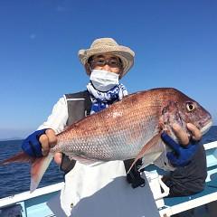 9月 24日(金) 午後便・ウタセ真鯛の写真その4