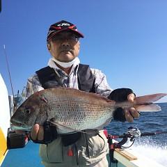 9月 24日(金) 午後便・ウタセ真鯛の写真その5