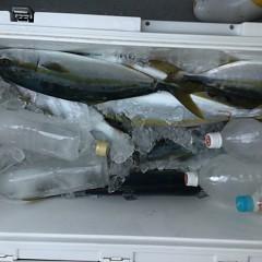 9月 25日(土)午前便・タテ釣りの写真その5