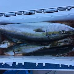 10月 3日(日)午前便・タテ釣りの写真その6
