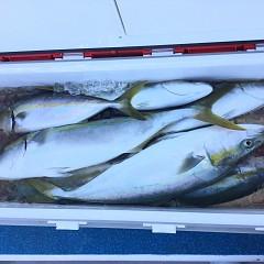 10月 3日(日)午前便・タテ釣りの写真その7